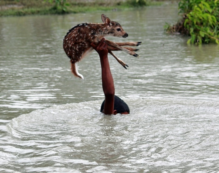 Двадцать искренних фотографий о доброте, которая спасёт мир